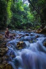 theravada-monk-1750995_640