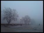 Dark-Winter